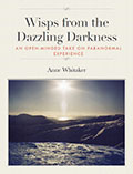 Wisps from the Dazzling Darkness Cover