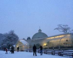 Kibble Palace, winter twilight