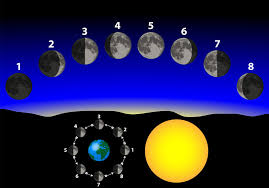 Sun:Moon Cycle